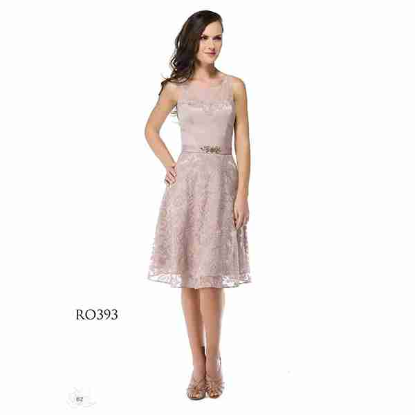 Light Pink Dress Image