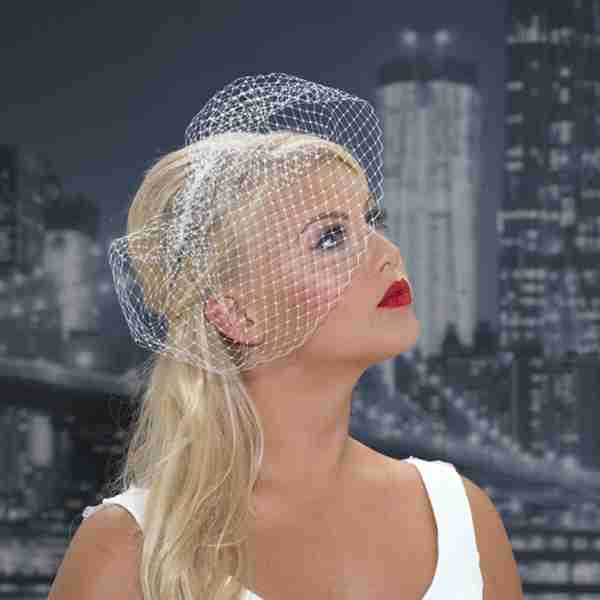 Birdcage Veil on Comb Image